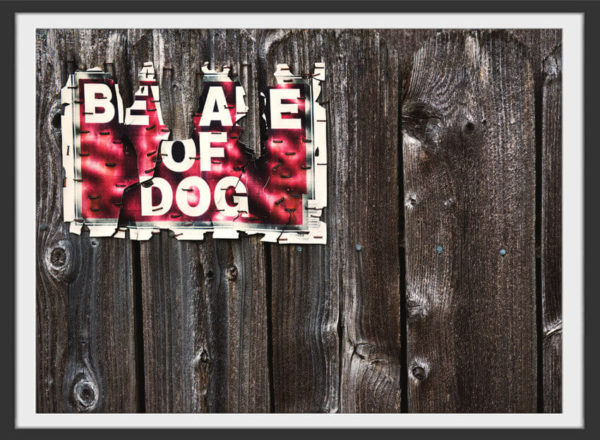 Plakat Beware of dog