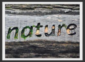 Plakat Nature