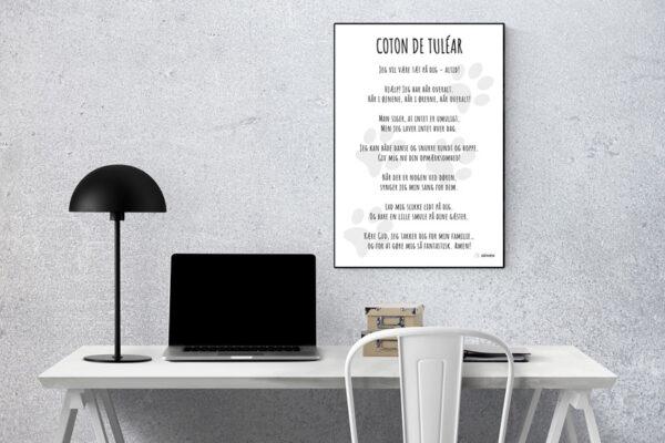 Plakat Coton de Tuléar