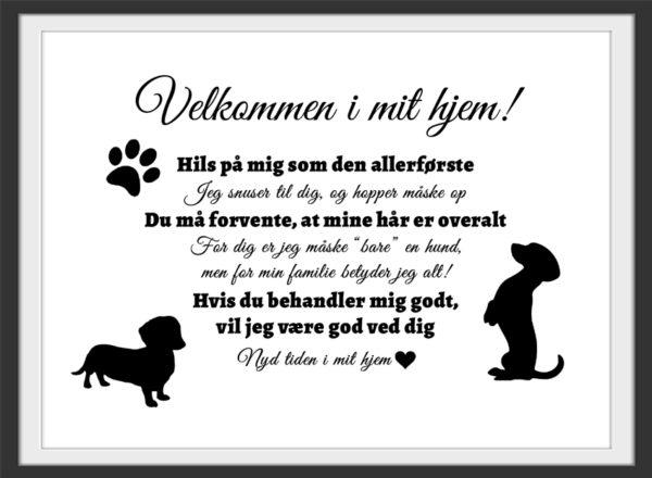 Velkommen i mit hjem - Gravhund