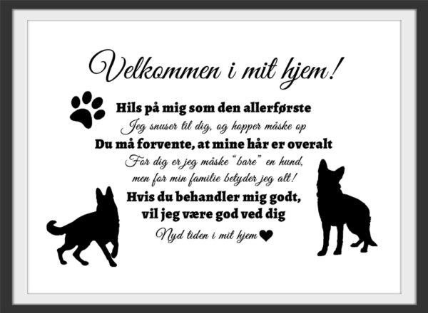Plakat velkommen i mit hjem - Schæferhund