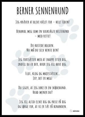 Plakat Berner Sennenhund