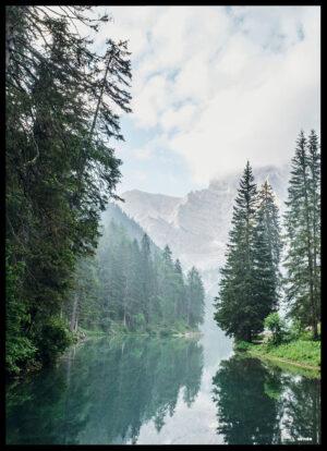 Floden gennem skoven plakat
