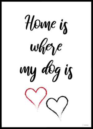 Home is where my dog is plakat